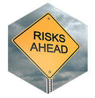 The Influence of Risk Perception